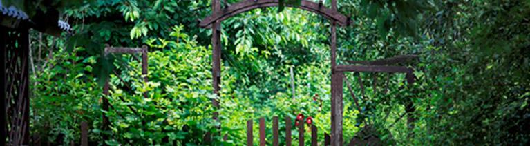 Ekologiczna uprawa ogrodu